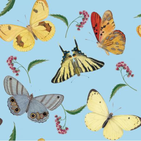 Fabric 12096 | Motyle Pale Blue