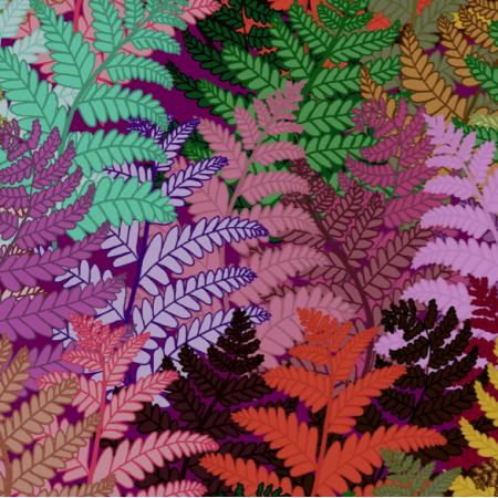 12343 | ferns lily