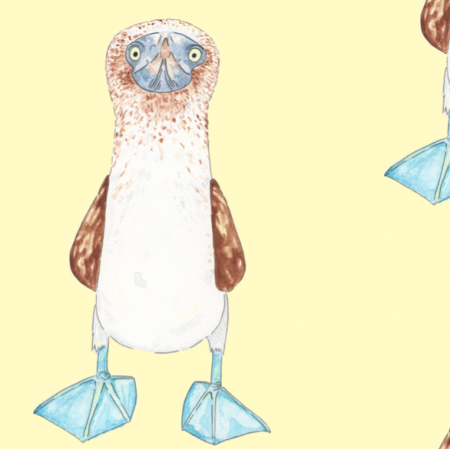Tkanina 12662 | Głuptak niebieskonogi