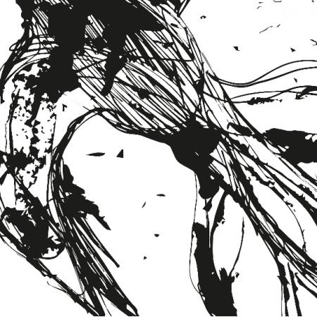 12664 | Flying Bird - wihte-black pattern for pillow