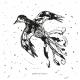 Tkanina 12664 | Flying Bird - wihte-black pattern for pillow