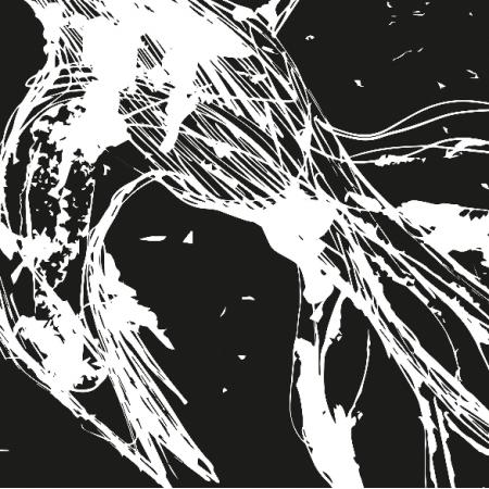 12665 | Flying Bird - black-white pattern for pillow