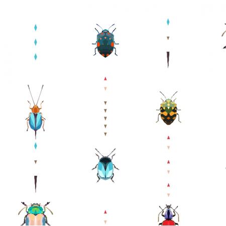 13084 | Kolorowe owady