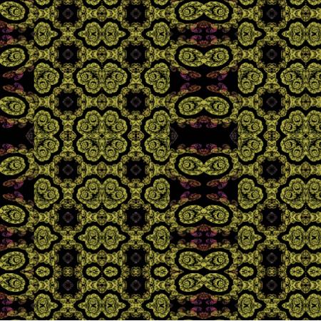 13357 | fraktarzyna