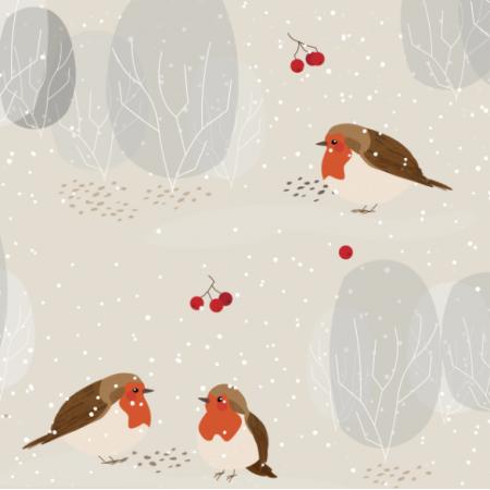 Fabric 13366 | zimowe ptaszki | beżowe | większe