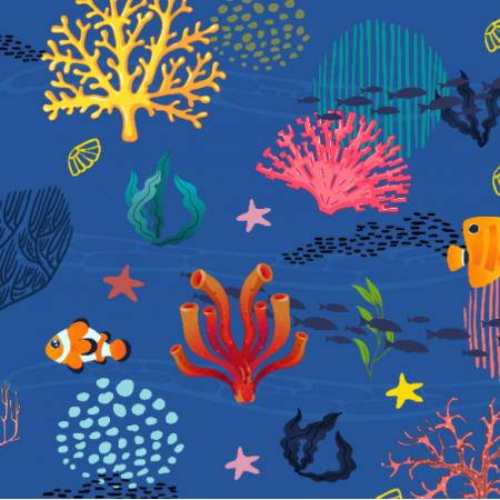 13630 | 019-underwater