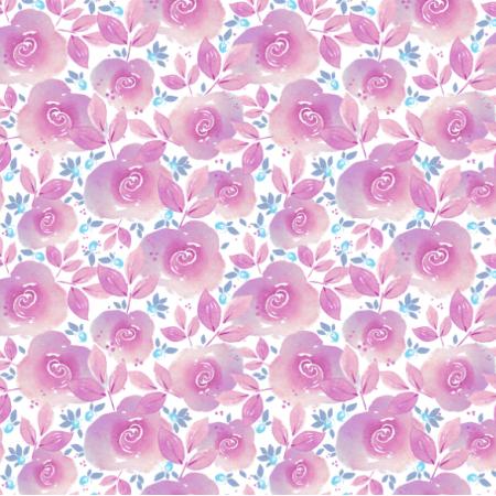 14456 | Rose garden