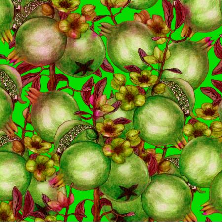 14486 | Pomegranate
