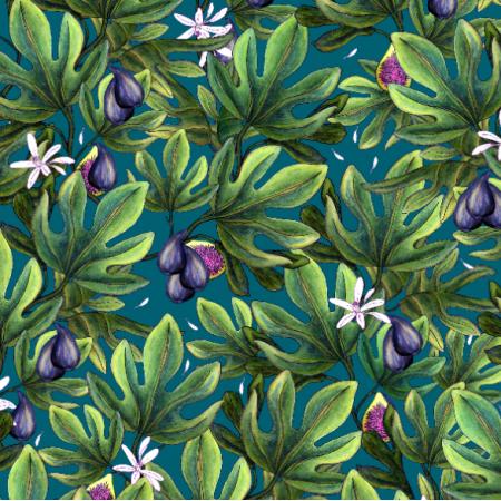 14492 | Figs
