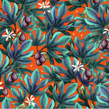 14494 | Figs