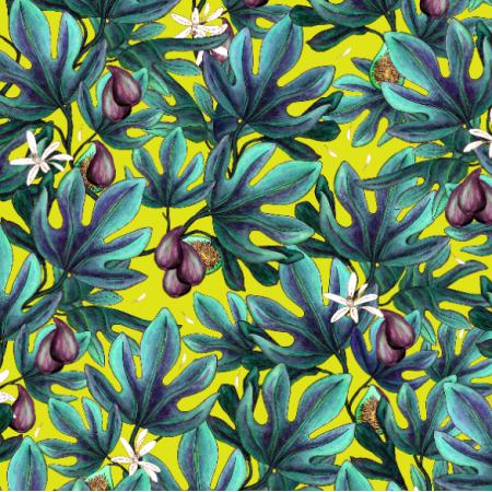 14496 | Figs