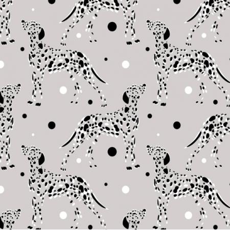 14518 | Dalmatyńczyki psy na szarym tle
