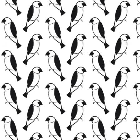 Tkanina 14528 | wróbelki na białym tle