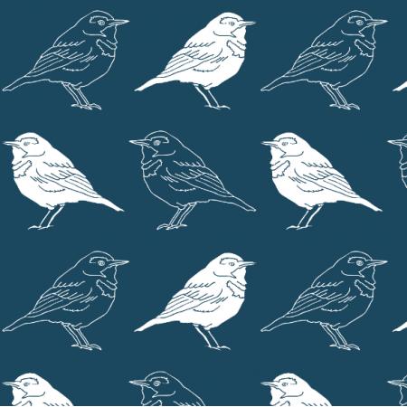 14988 | Ptaki CIEMNE niebieskie tło