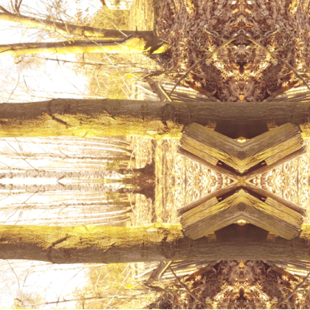 Tkanina 15288 | Żółte drzewa