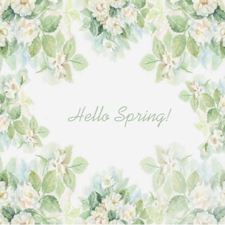 | Hello Spring - White Roses000