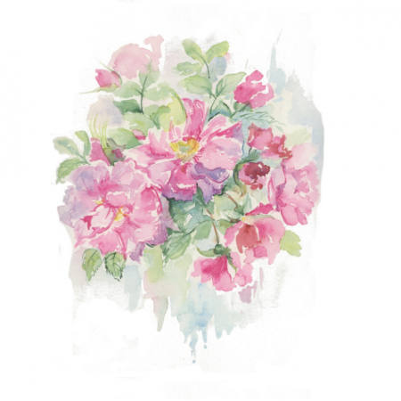 15371 | Dzika Róża