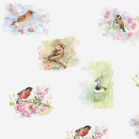 Tkanina 15512 | Ptaszki - Birds