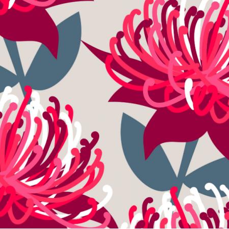 15580 | Waratah Australian Flora Pink Grey