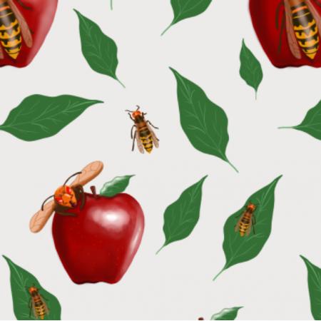 Fabric 15645 | Szerszenie i jabłuszka