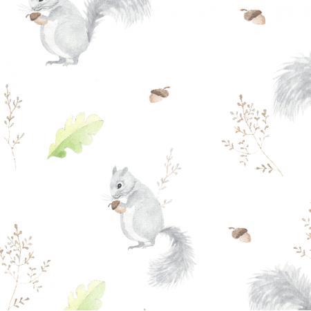 Fabric 15667 | wiewióreczki