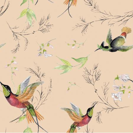 15713 | rajskie  ptaki