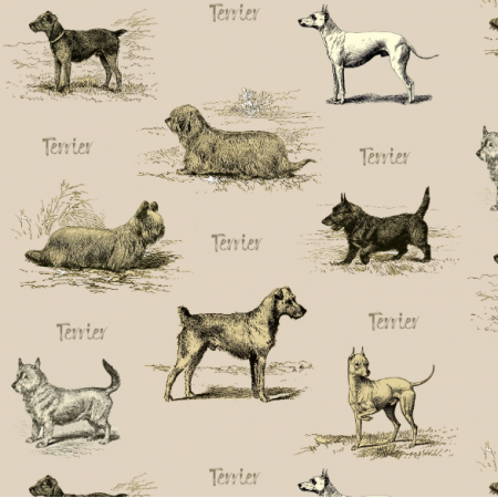 Fabric 15853 | PSY TERRIERY - English Terrier dogs