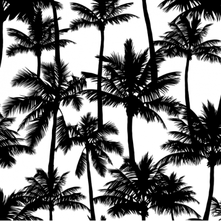 16015 | Palm trees // black on white