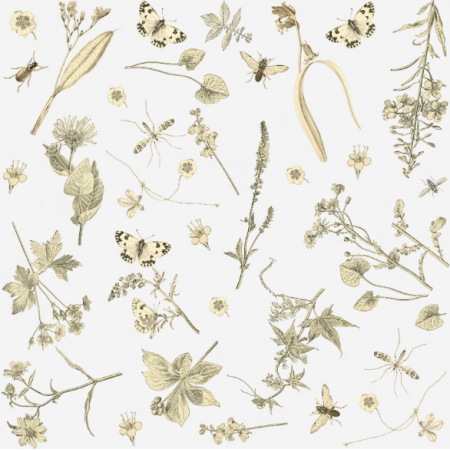 Fabric 16036 | KWIATY I OWADY - FLOWERS & INSECTS