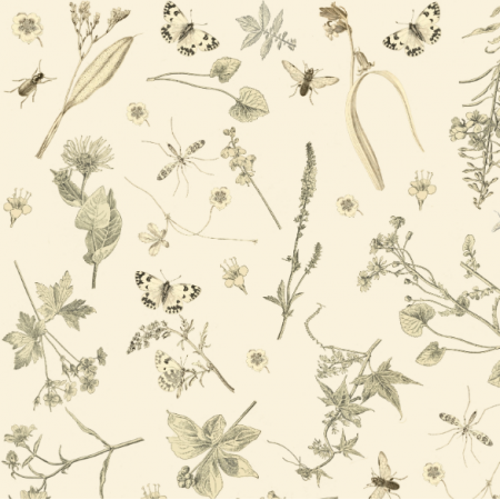 16038 | KWIATY I OWADY KREMOWE TŁO -  FLOWERS & INSECTS ON CREAMY BACKGROUND