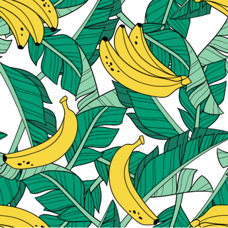 16042 | Bananas and leaves // white