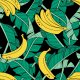 Fabric 16044 | Bananas and leaves // black