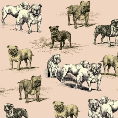Fabric 16117 | PSY BULDOGI - BULLDOG DOGS