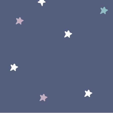 Tkanina 16164 | gwiazdki 2