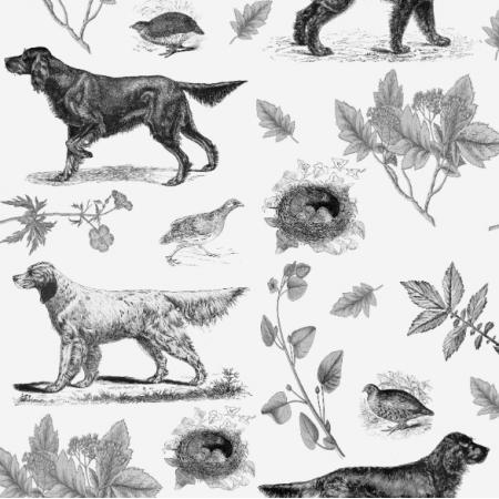 16236 | PSY SETERY - SETTER DOGS