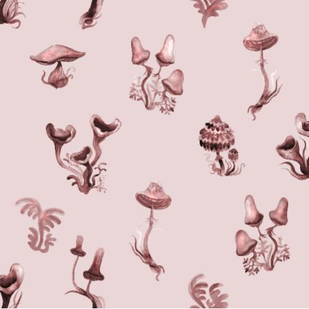 16294   monochromatyczne grzybki