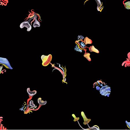 16334 | małe grzybki