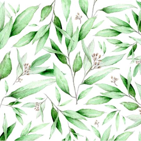 Tkanina  | Eukaliptus