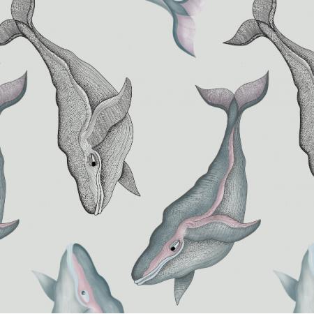 16449 | Wieloryby na szarym