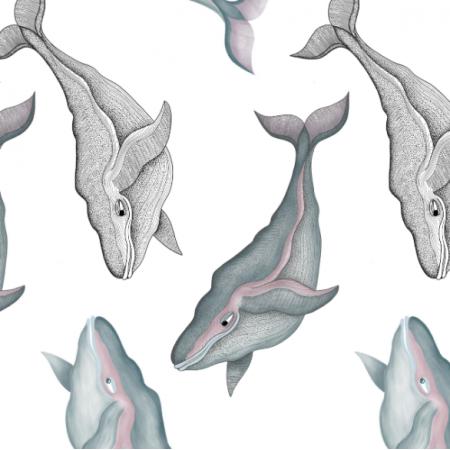 Fabric 16451 | Wieloryby na białym