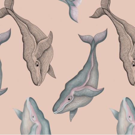 16452 | Wieloryby na brzoskwiniowym