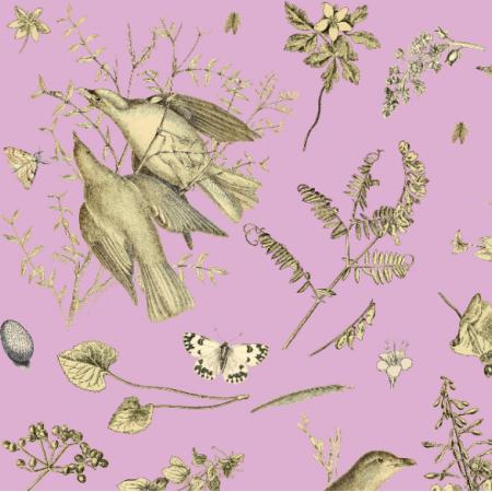 Fabric 16465 | PTAKI NA LAWENDOWYM TLE