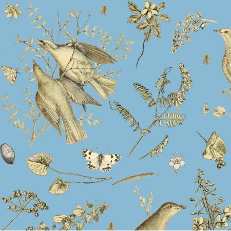 16474 | PTAKI NA NIEBIESKIM - BIRDS ON THE BLUE SKY