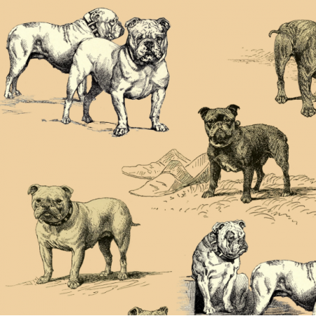 Tkanina 16483 | PSY BULDOGI - BULLDOG DOGS