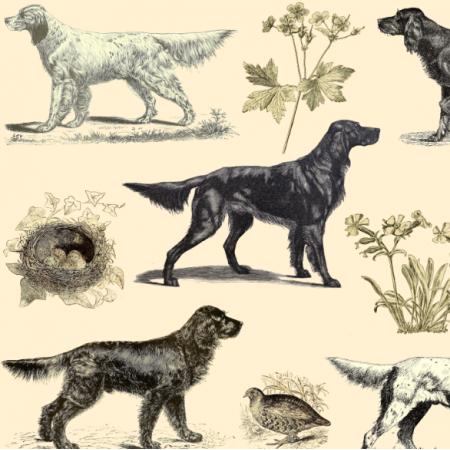 Tkanina 16508 | PSY SETERY NA ECRU - SETTER DOGS ON ECRU