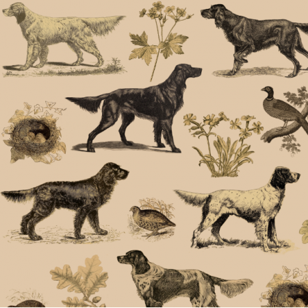 Fabric 16511 | PSY SETERY W BEŻU - SETTER DOGS on light brown