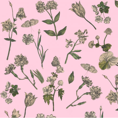 16518 | OGRÓD BOTANICZNY NA LILIOWYM TLE - BOTANICAL GARDEN ON PINK Lavender