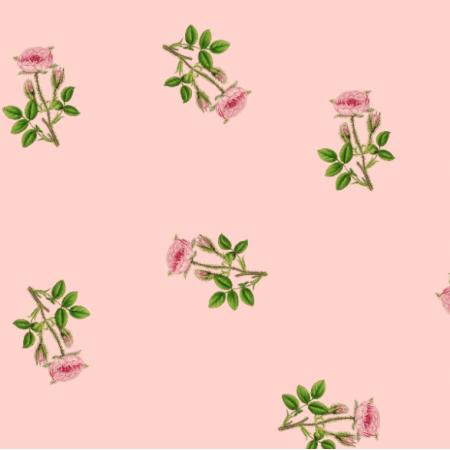 16565 | RÓŻOWE RÓŻYCZKI - PINK ROSE FLOWER