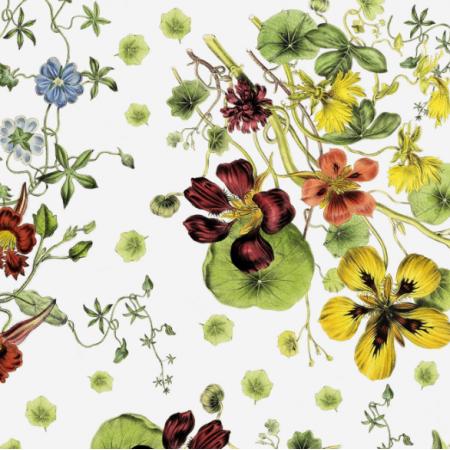Fabric 16694 | BUKIET NASTURCJI