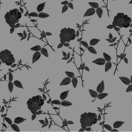 Fabric 16831 | CZARNA RÓŻA